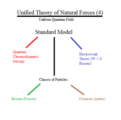 What does the standard model account for?
